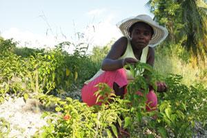 Ariette Tessono and her garden. Credit:Worms/Caritas