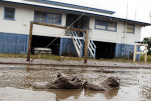 A pair of shoes lie in the mud after flooded waters start to receded in Bundaberg, Queensland, Australia January 1, 2011. Flood water rose across Australia's northeast on Friday, covering an area bigger than France and Germany combined, inundating 22 towns and stranding 200,000 people, and closing one of the country's major sugar export ports. Credits: REUTERS/Daniel Munoz (alertnet.org)