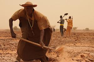 Caritas Niger (CADEV) Food for Work project in the village area of Karma, 60 km west of Niamey. Members of the most vulnerable families dig half-moons. These harvest rainwater and help recover areas for farming or grazing animals. Credits: Worms/Caritas