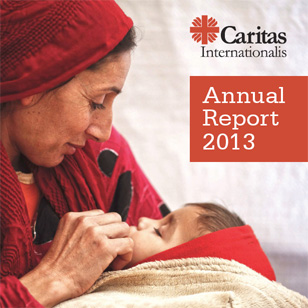 Download our Annual Report 2013 (pdf)