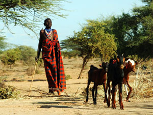 Pastoralists saw the signs of the 2005/6 food crisis Credits: Caritas Archive