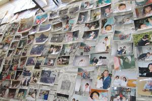 Pictures waiting their owner at a shelter in Onagawa. Credits: Caritas Japan 2011