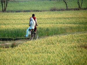 Un paseo por la Calle de la Amargura en Nepal