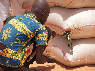 Caritas Niger (CADEV)  supports a seed fair in the village of Koira Bano, north of Ouallam, near the Malian border. This is one of the places that is most affected by the food crisis. Local merchants provide drought resistant seeds so that the farmers from neighbouring villages can select those they want to buy with the vouchers donated by Caritas. Credit: Worms/Caritas