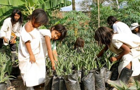 Right to food: a concrete utopia