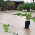 Flood in Malawi. Photo by Caritas Malawi