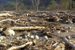Destroyed hamlet