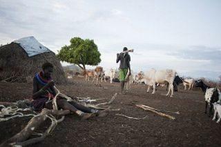 Growing numbers fleeing conflict in South Sudan