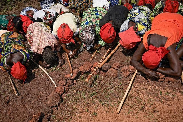Good Friday killing of priest in Central African Republic