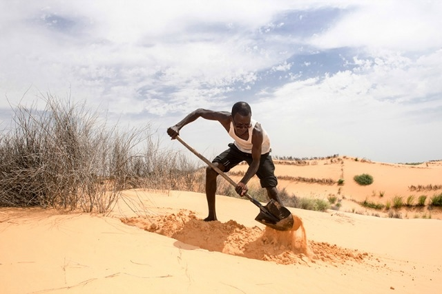 Adam Bassaí works to prevent fertile land from transforming into desert. In exchange for this work, he receives cash from CRS in Niger. Photo by Michael Stulman/Catholic Relief Services