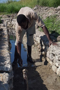 Quenching the rice fields' thirst in Haiti