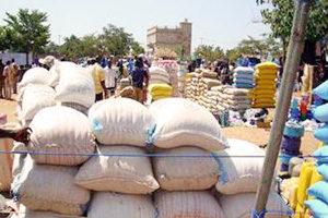 Averting crisis in West Africa's Sahel