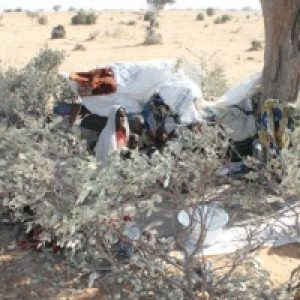 Tragedy in Niger for people fleeing Boko Haram
