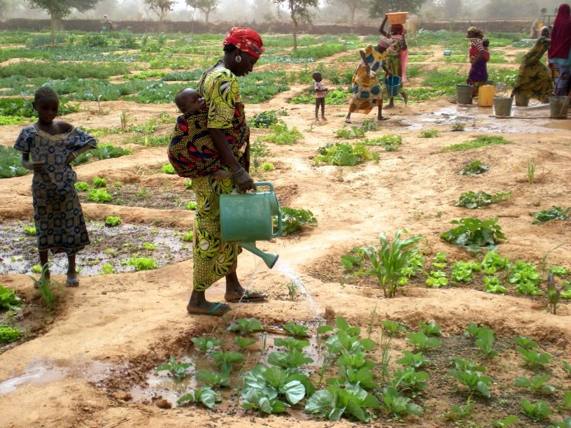 Helping Niger prepare for food crisis