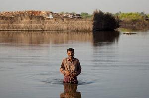 World failing Pakistan flood victims