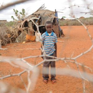 Where next for Somalia?