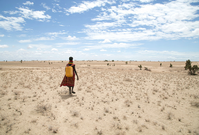 Akai Akiru, 40, was walking across these dusty plains a few hours outside of the capital of Turkana County, Lodwar. She was going to fetch water, she said, somewhere beyond the distant horizon. It takes her three hours to walk there, and three hours to get back, carrying the full 20-liter (5-gallon) jug on her head. That, she said, sums up her entire day. She is too tired to do anything else. She, her husband and three children survive on each day's water she brings and wild doum palm fruit, she said. But not one doum palm tree is in sight. Photo by Nancy McNally/Catholic Relief Services