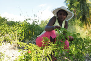 Ariette Tessono and her garden. Credit:Worms/Caritas