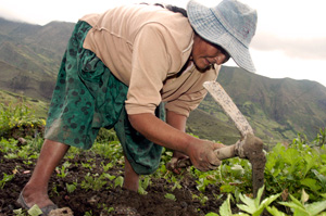 Caritas is helping poor communities in Bolivia deal with the impact of climate change Credits: Alexander Bühler/ Caritas Germany