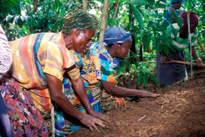 Tree planting is key. Forests have potential to mitigate some of the impacts of climate change like drought, floods and landslides. Credits: Nicholson/Caritas