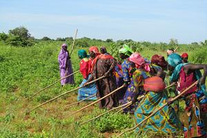 All 120 women of the Hadj al-Dérib, a village in the Sahel region of Chad, are members of a committee which takes care of the cultivation of various crops as well as the granary and the mill. Credits: Lisa Krebs/Caritas Switzerland
