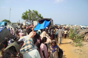 100,000 people have fleed the warzone in Sri Lanka Credits: Caritas