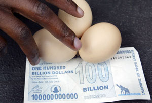 A vendor arranges eggs on a new 100 billion Zimbabwean dollar note in Harare July 22, 2008. Zimbabwe's central bank introduced new higher-value 100 billion Zimbabwe dollar notes on Monday as part of a desperate fight against spiralling hyperinflation, the bank said. An egg now costs $35 billion. Credits: Bulawayo/REUTERS