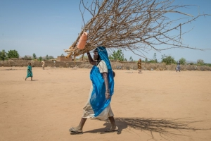 A women collects wood in Darfur, Sudan. Annie Bungeroth/ACT Caritas