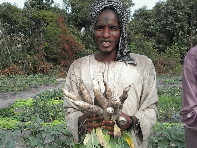 Dairou Abdoulaye is one of the women to have benefited from the Caritas Chad farming programme. Photo by Caritas Chad.