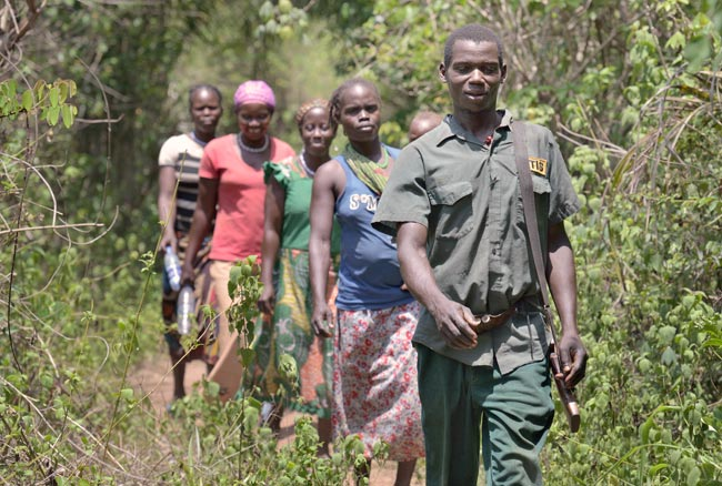 Church farming project gets protection from community self defense militias in South Sudan. Photo by Jeffrey/Caritas