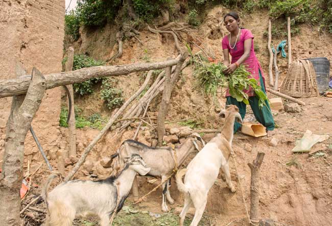 Photo par Bikash Khadge / CAFOD