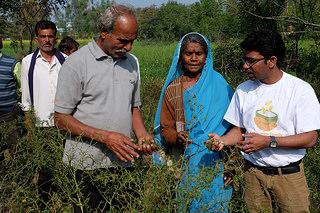 Dans le village de Bagrohi, près de Sagar, dans l'état indien de Madhya Pradesh, des agriculteurs cultivent du blé, des haricots noirs, des piments et d'autres sortes de cultures grâce à l'aide de SAFBIN, un programme d'adaptation agricole financé par Caritas Autriche. Photo de Laura Sheahen/Caritas.