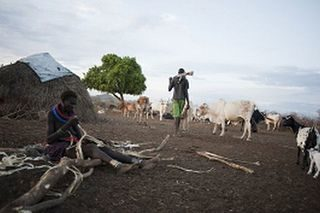 Growing numbers fleeing conflict in South Sudan