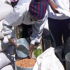 Ayuda alimentaria demasiado lenta para Zimbabue
