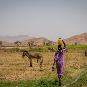 Darfur: A day in the life