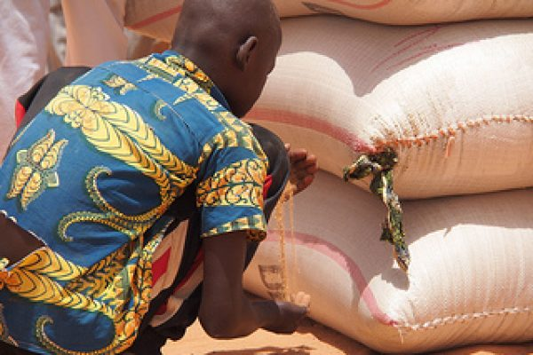 Hunger in Niger could double without action