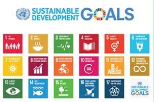 Objetivos de Desarrollo Sostenible (ODS): Preguntas más frecuentes