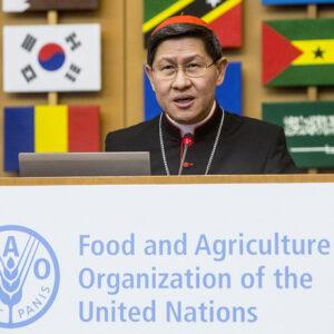 Le Cardinal Tagle examine les moyens de contrer la perte de nourriture dans sa phase de production