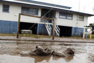 Australia lucha contra las inundaciones