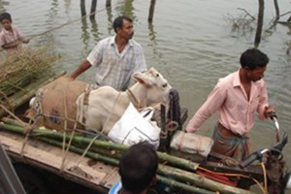 Caritas helping Bangladeshis stranded by floods