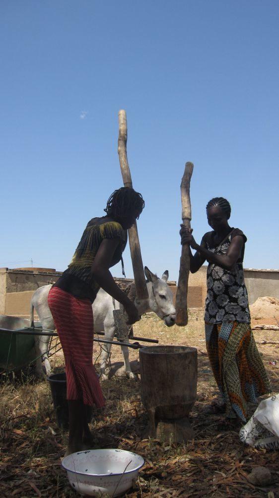 Promesse de bonnes récoltes au Burkina Faso