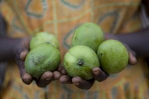 Future without Hunger – Congress on Global Hunger