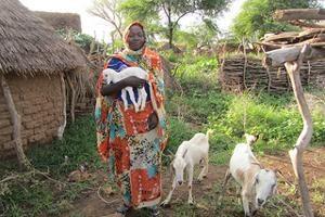Au Tchad, le vert est la couleur de l'espoir