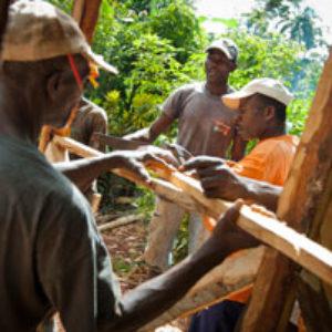 Reconstruir el entorno rural en Cabo Rojo