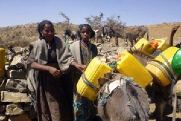 Ethiopia drought relief work 'still critical,' says Caritas