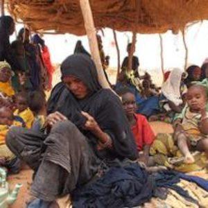 La solidaridad de los campesinos nigerinos en dificultades