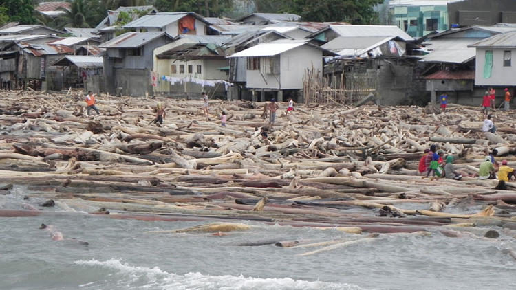 Recycling timber to aid victims of Typhoon Washi