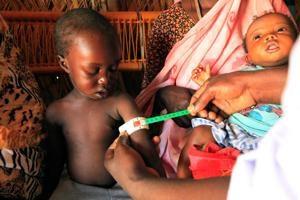 Los enfrentamientos se intensifican en Darfur mientras Caritas presta asistencia a medio millón de personas