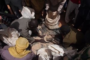 Niger fights off food crisis