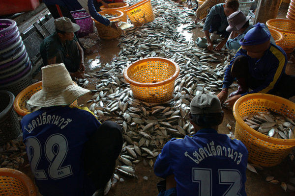 Énfasis en la industria pesquera en la Jornada de oración contra la trata de seres humanos hacemos